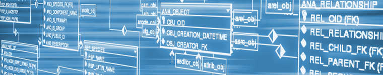 Проектирование и администрирование баз данных